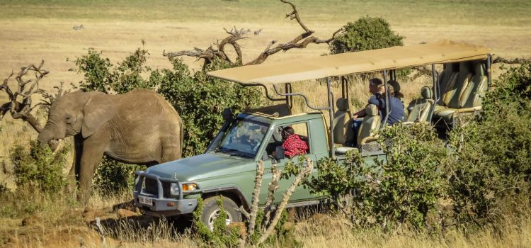 13 reasons why…you owe it to yourself to visit Africa