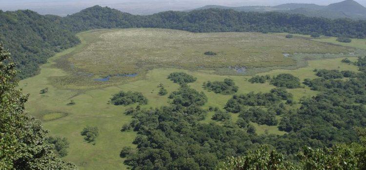 Northern Tanzania Exclusive Safari