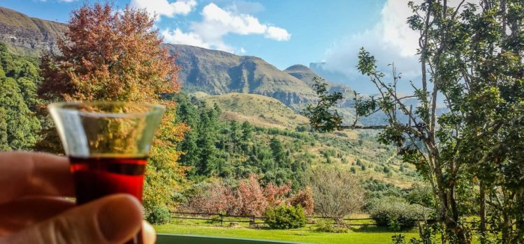 Road Trip Report: Exploring the east of South Africa: Part 4 – Champagne Castle Hotel, Drakensburg