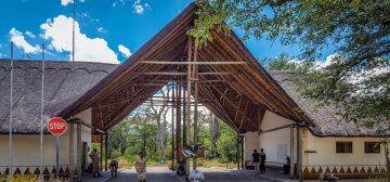 Safari Notes: Moremi Game Reserve, Botswana