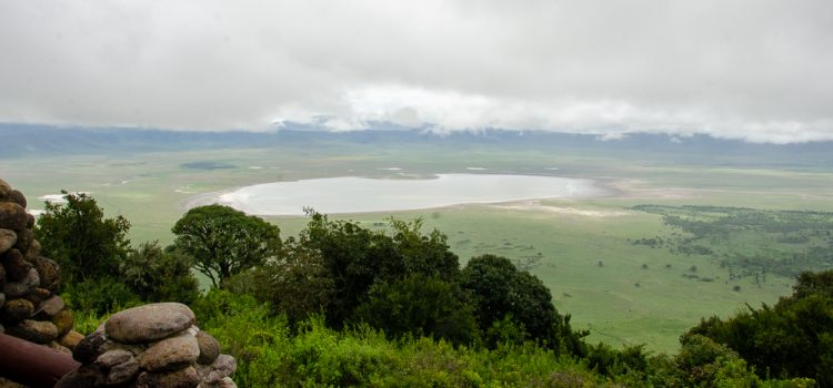 Your Virtual Safari – Day 5 – From the city to the Ngorongoro Crater
