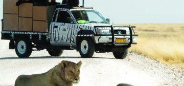 Etosha Safari Camp Gondwana Collection Namibia